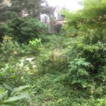 12M Lot for sale in Filinvest 1 Batasan Hills Commonwealth QC